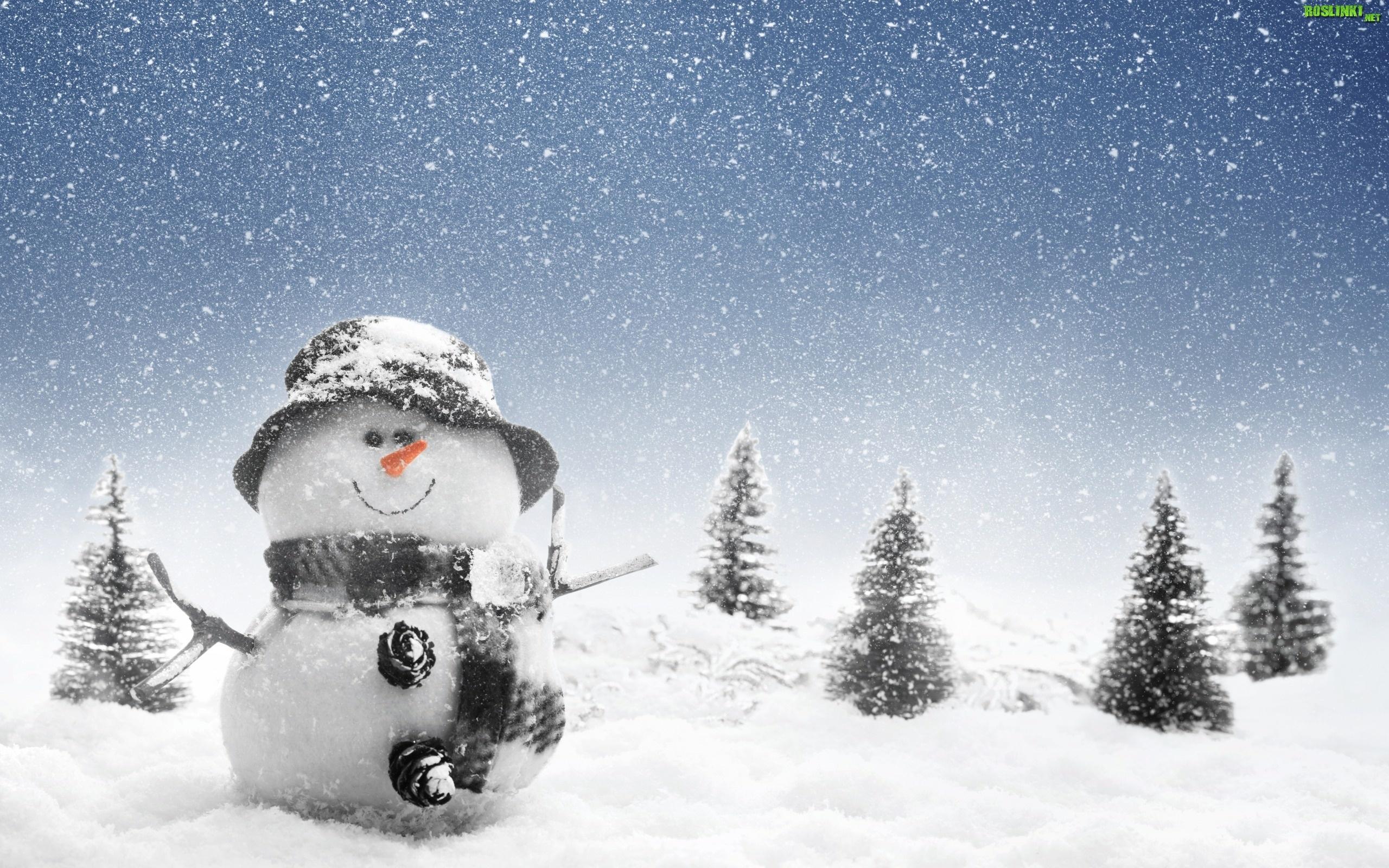 Bałwanek, Świerki, Śnieg, Zima